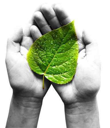 dzien-ochrony-srodowiska-edukacja-ekologiczna-ekologia